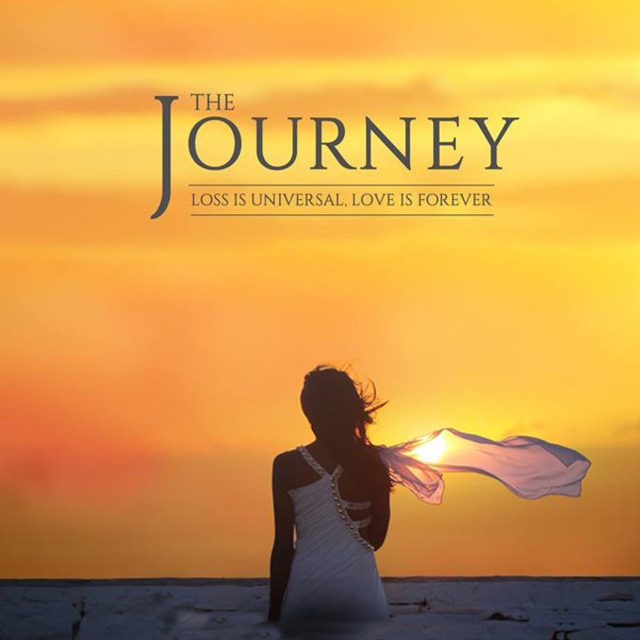 Normal the journey dvd cover  no text